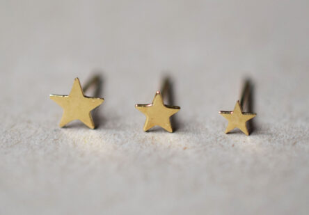tiny Star Earstuds