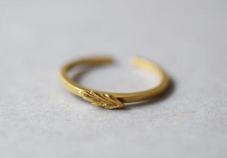 Ring Grass