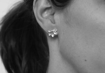 Earstuds Starflower